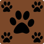 Brown with Charcoal Paws